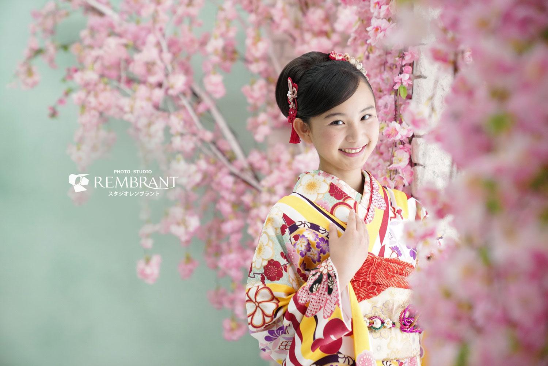13参り 桜のセット